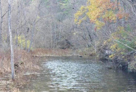Spring Creek Road Alma Twp