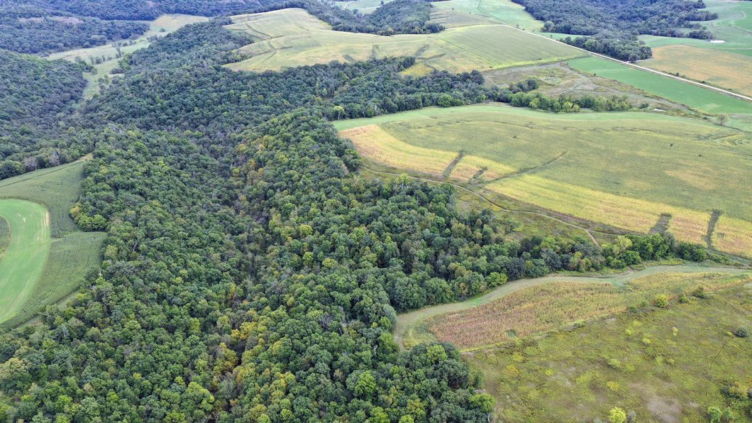 Land for Sale in southeast Minnesota - 71.02 Acres in Wiscoy Valley