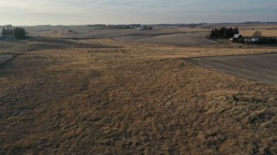 Bluff Country Properties - 75.37 acres of high ground, gently rolling tillable for sale Chatfield