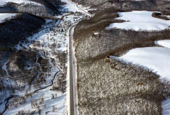 Prime Hunting Land for Sale in Wabasha County